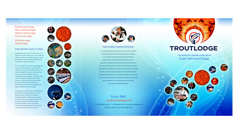 Troutlodge Company Brochure